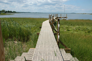 Beachfront Boardwalk crossing over marsh with the use of helical piles for foundation supports