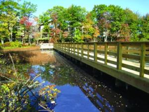 Helical pier construction for boardwalk over bog