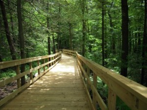Norwell, MA elevated boardwalk built with Chance helical piers for foundation support through wetlands